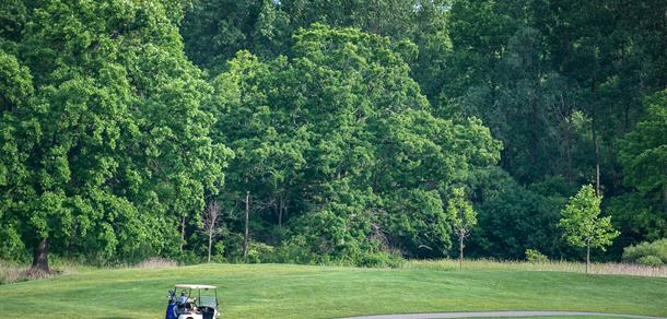 Play 9 or 18 holes at Leslie Park Golf Course.